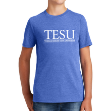 Load image into Gallery viewer, District Youth Perfect Tri Tee - Serif