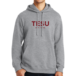 Port & Company Fan Favorite Fleece Pullover Hooded Sweatshirt- Distress