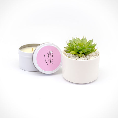 Succulent and Candle Gift Set