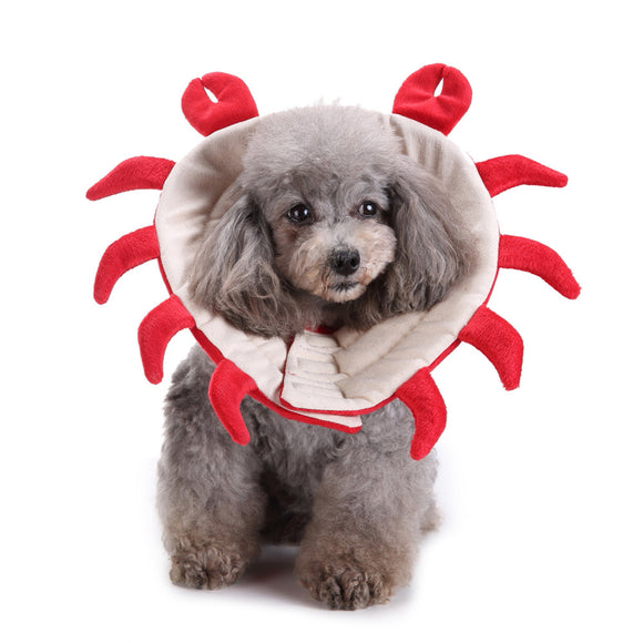 Adorable Crab Recovery Collar for Pets - The Dahlia Collective