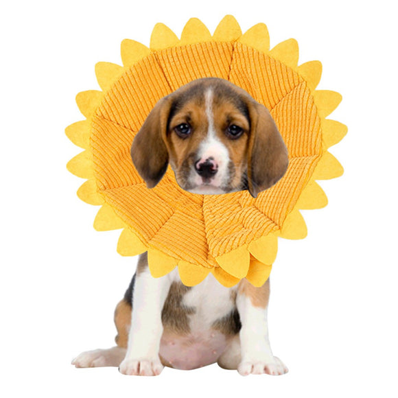 Adorable Sunflower Recovery Collar for Pets - The Dahlia Collective