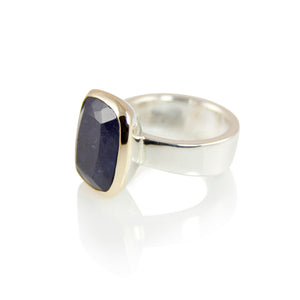 KenSuJewelry Bowl Ring with 14kt. Gold Border and Kyanite Rectangular
