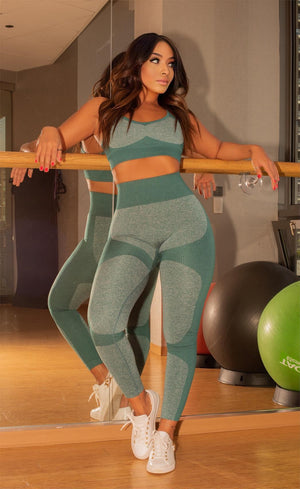 Nicole Seamless Fitbabe Ombre Sports Bra