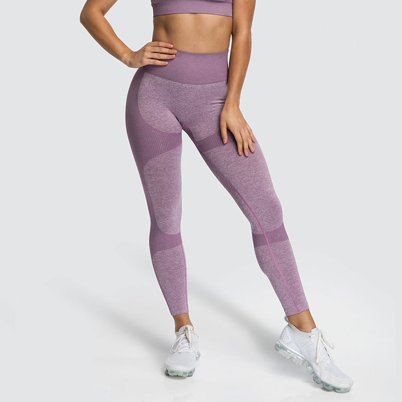 Nicole Seamless Fitbabe Set - High Waist Ombre Yoga Pants and Sports Bra