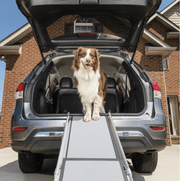 Petsafe - Telescopic Dog Ramp *SPECIAL OFFER*