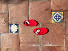 Load image into Gallery viewer, Red Kids Water Shoes