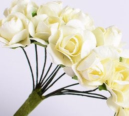 Statice Paper Flowers 1.5cm - Posy of 12.  2 colours Ivory & White