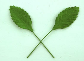 Green Paper Leaves - 2 sizes 2.5cm & 5cm long, wire stem, Packs 10