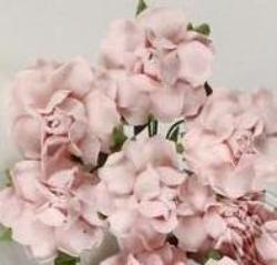 Rose - Pale Pink Paper - 2.5cm - posy of 5
