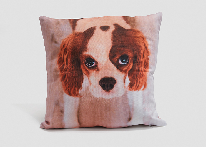 60x60cm Cotton Photo Cushion - Haddow Group