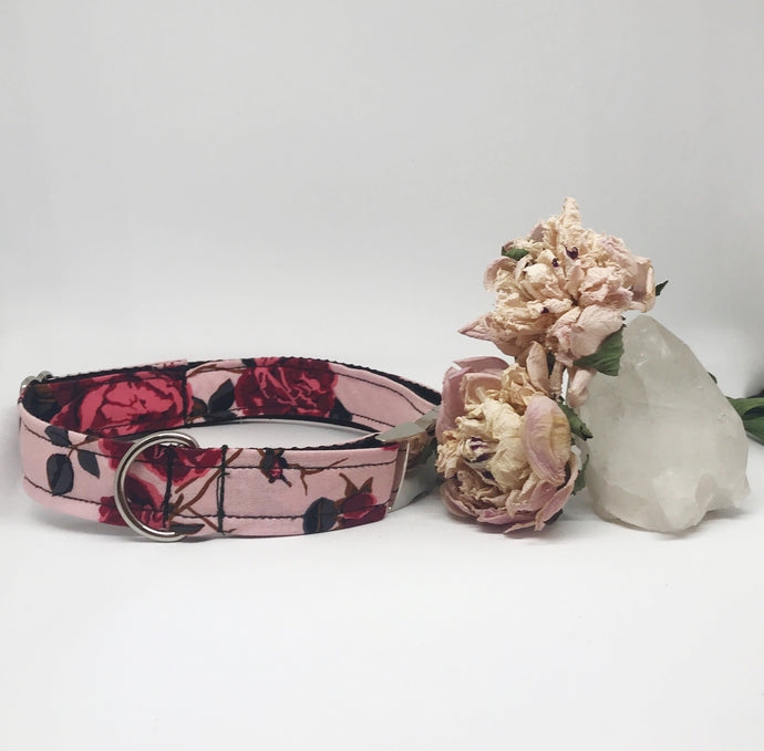 Parisienne Rose Dog Collar