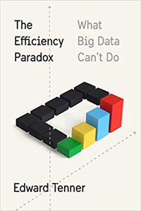 The Efficiency Paradox What Big Data Can't Do