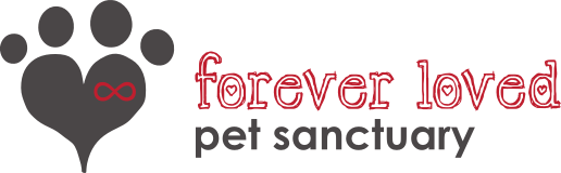 forever loved pet sanctuary