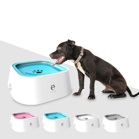 Pet Drinking Water Device Feeders