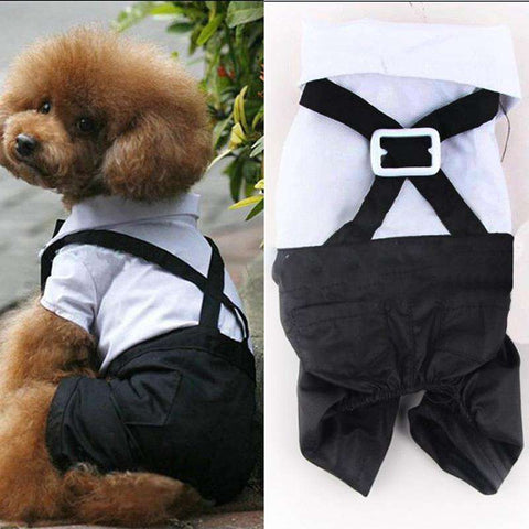 Bow Tie Clothes for Small Pet Dogs