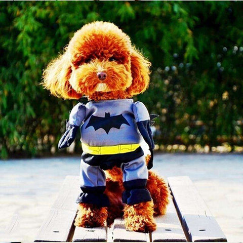 Batman Dog Clothes Pets Clothing Charming Costume