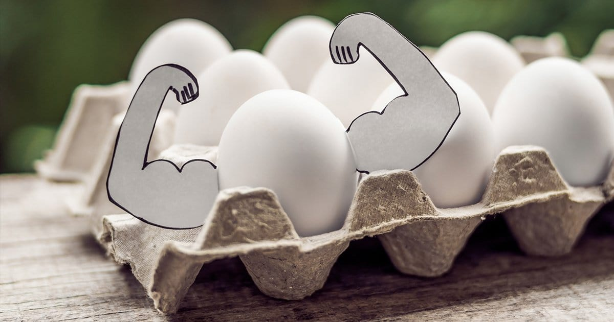 The Benefits of Egg White Protein