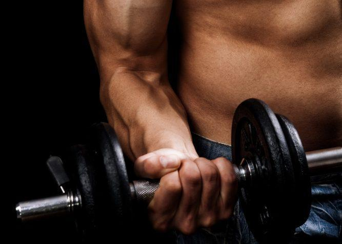 Basic Rules of Muscle Building