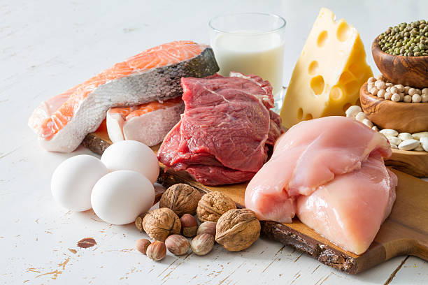 high protein foods for fat loss