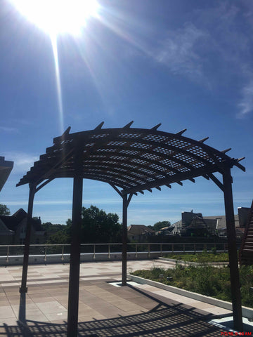 Arched Redwood Pergola in Carrol University