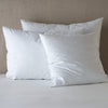 Bella Notte Linens Pillow Inserts
