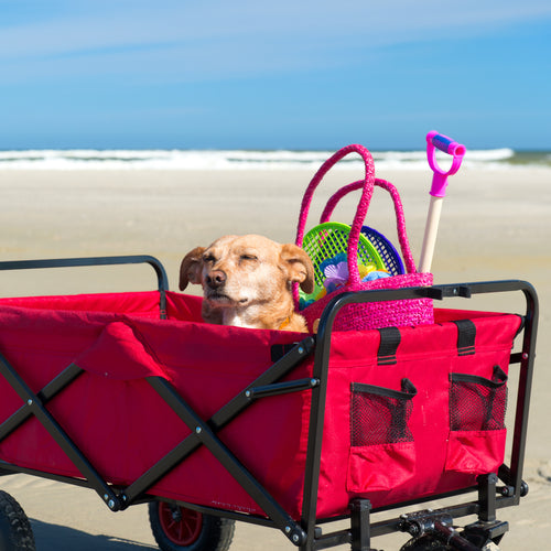 Large Beach Cart Week Rental