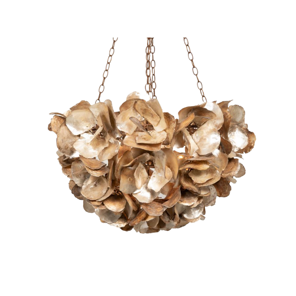 Champagne Oyster Chandelier