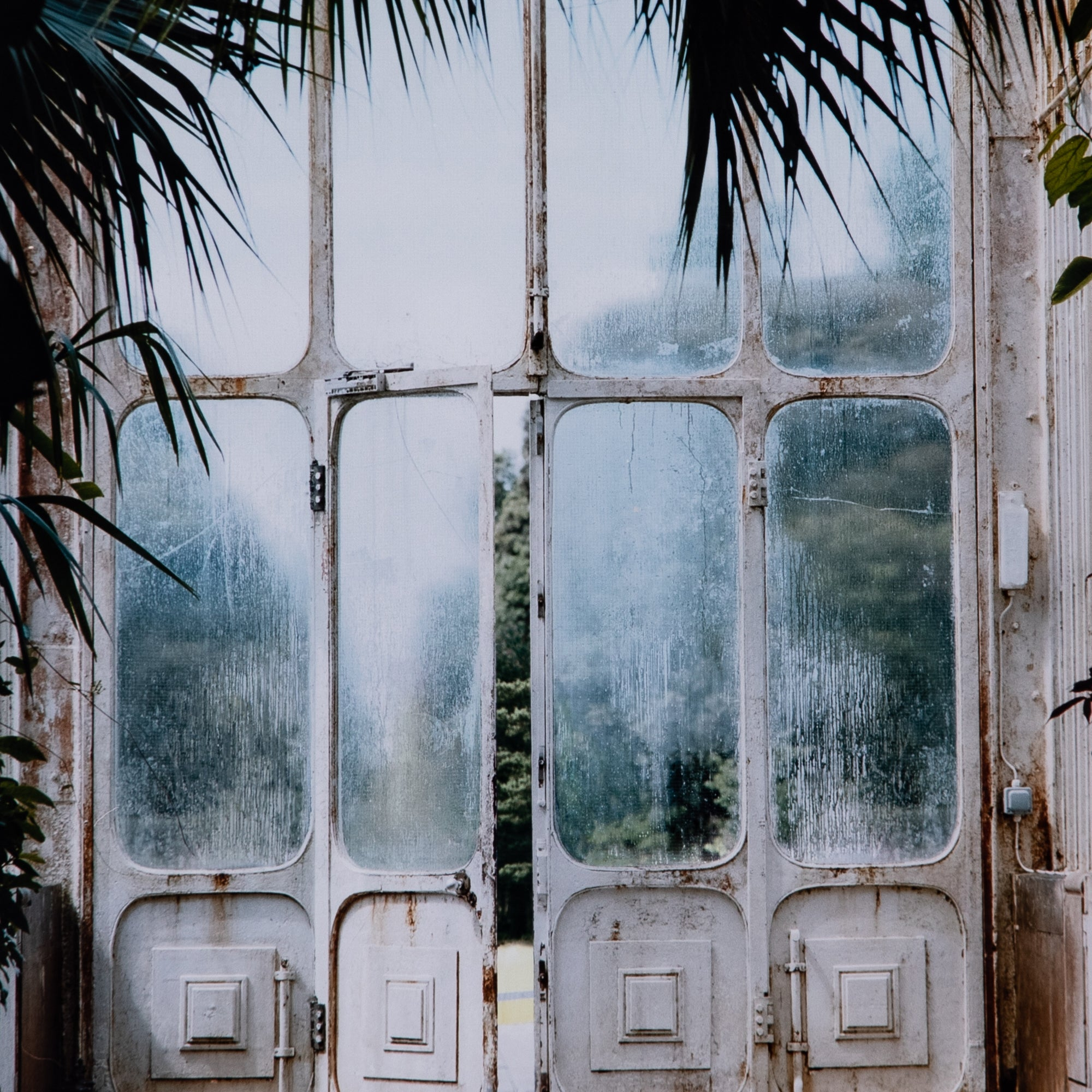 Aged Greenhouse