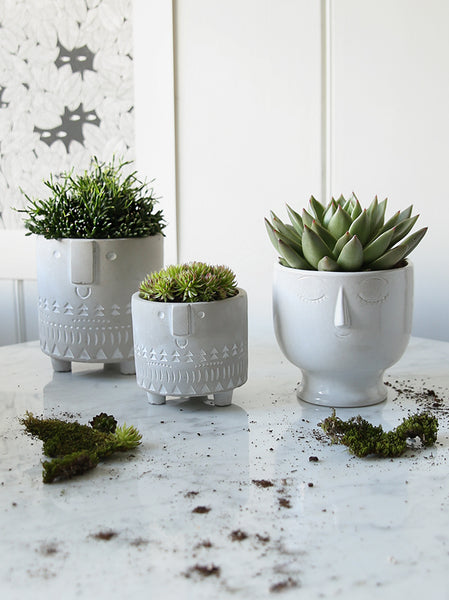 Face Planter Collection