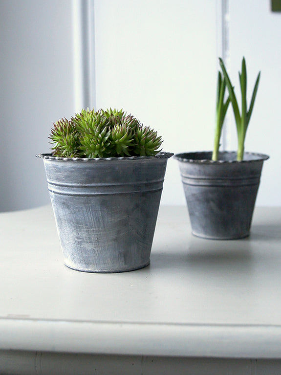 Metal Crimped Edge Plant Pot
