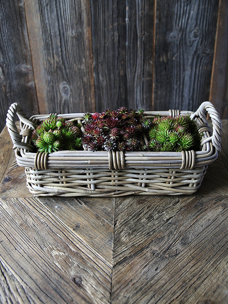 Willow Plant Basket