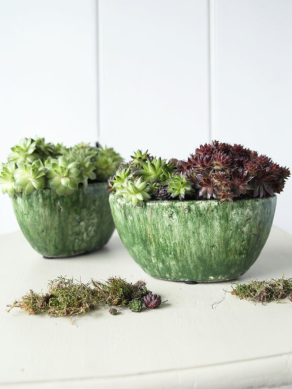 Forest Green Oval Pot
