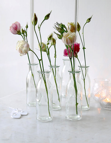 Mini Clear Bottle Vase