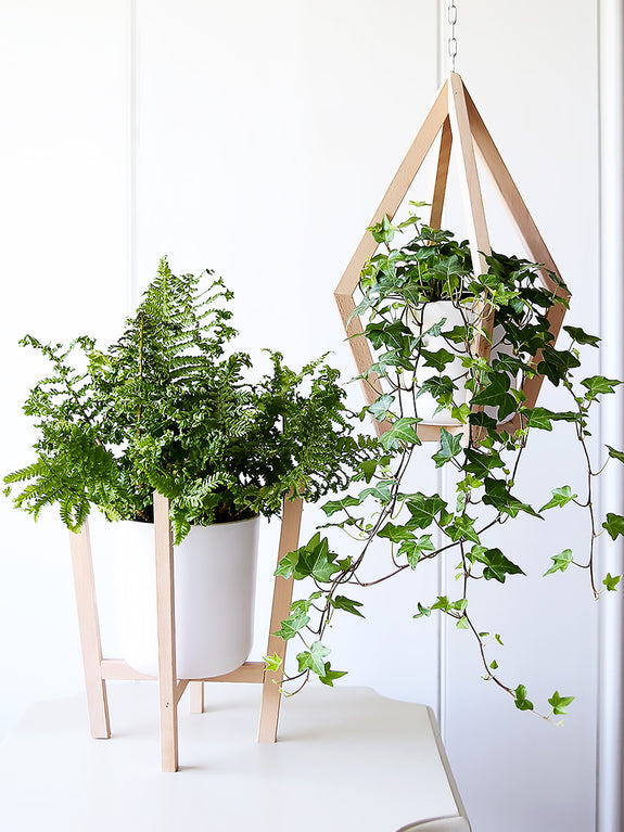 Scandi White and Blonde Wood Planter