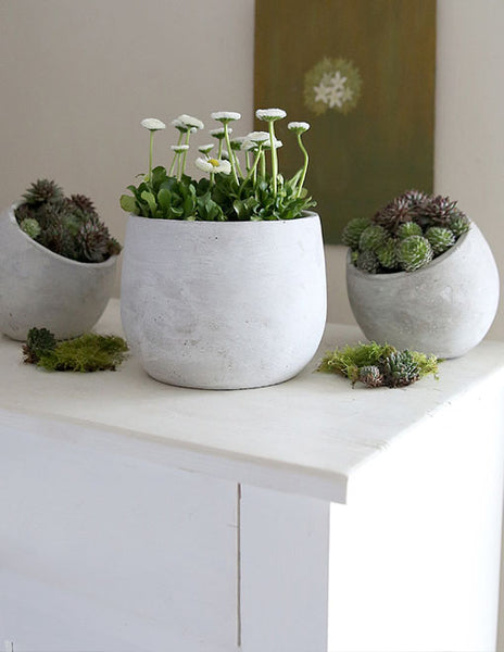 Whitewashed Cement Plant Pots