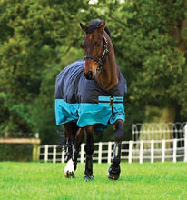Load image into Gallery viewer, Horseware Mio 200g Turnout Rug