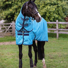 Load image into Gallery viewer, Horseware Amigo Hero Ripstop Plus 100g Turnout Rug