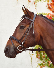 Load image into Gallery viewer, Mackey Equisential Flash Bridle with Reins