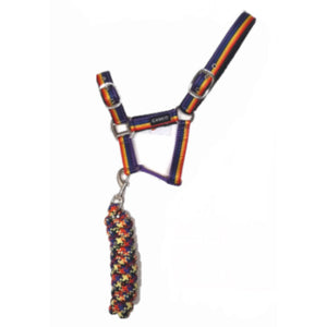 Cameo Rainbow Riders Headcollar Set