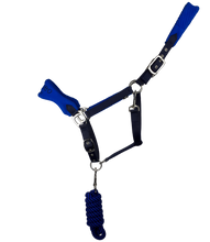 Load image into Gallery viewer, Cameo Elite Comfort Headcollar & Leadrope Set