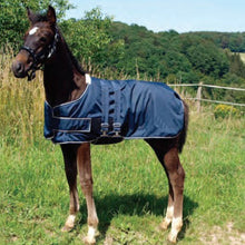 Load image into Gallery viewer, Waldhausen Foal Turnout Rug