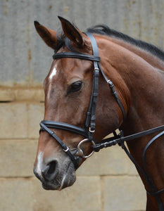 Mackey Equisential Flash Bridle with Reins