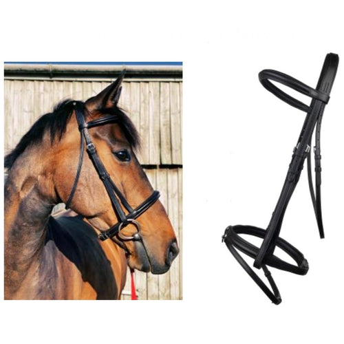 Cameo Comfort Bridle