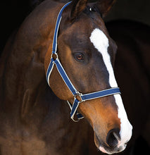 Load image into Gallery viewer, Horseware Amigo Headcollar