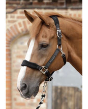 Load image into Gallery viewer, Premier Equine Fleece Padded Horse Headcollar