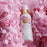 Virgin Rose Water
