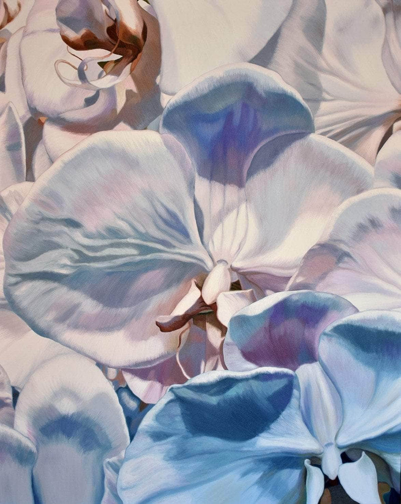 White orchids - Art Sleuth