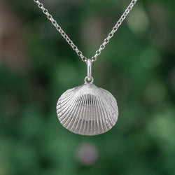 Cockle Seashell Pendant