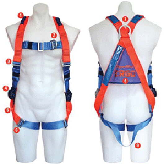 Ergo 1100 Full Body Harness