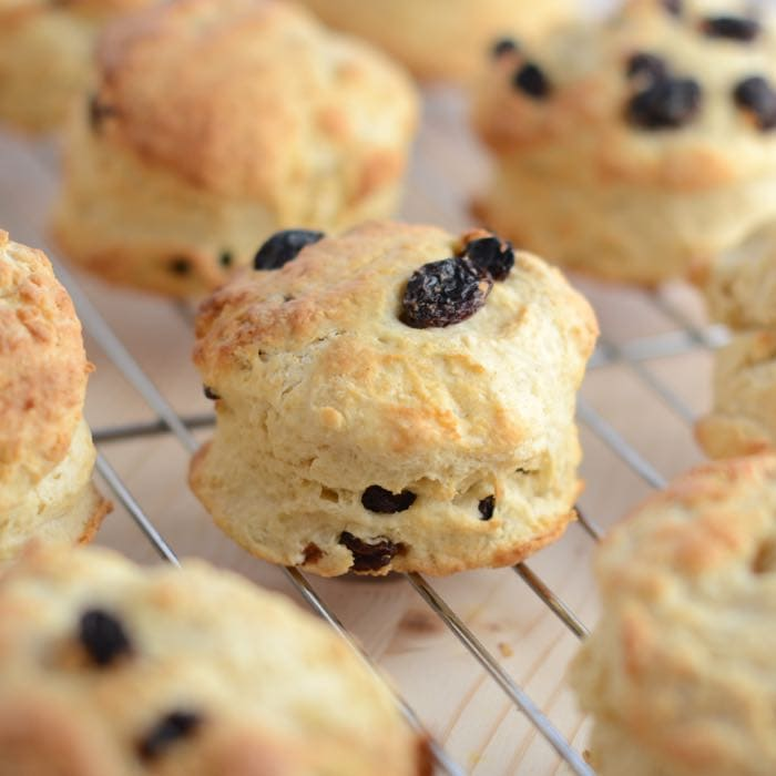 +fruit scones - Alchemy Bake Lab